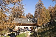 Die Sattler Hütte